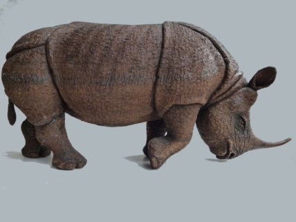 Foto Rhinozeross