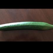 Bild grüne Gurke