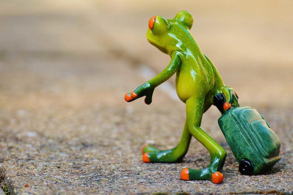 Frosch zieht einen Trolly hinter sich her